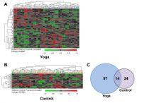 Aktivierte Gene durch die Yoga (A) und Gruppe (B). Yoga aktiviert mehr Gene als Praktiken der Kontrollgruppe B. (Qu et al. 2013)