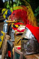 4. Kinderritterfest auf Burg Satzvey am 16./17. Mai 2015