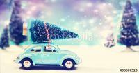 Abhol- und Entsorgungservice für Weihnachtsbäume in München