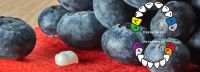 Kiddy-Caps: FIMA-CouronneTEC präsentiert neuartige Kinder-Zahnkronen aus Keramik auf der DGKiZ-Tagung 2016