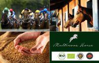 Vitalpilze für die Gesundheit Ihres Pferdes