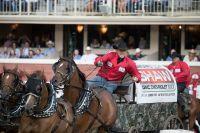 Die 105. Calgary Stampede lockt zur Rodeo-Show der Extraklasse