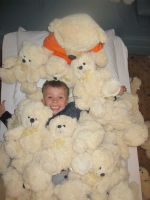 Skupellose Teddybären besetzen Hotel in Südtirol
