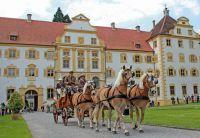 Traditionskutschen durch den Linzgau