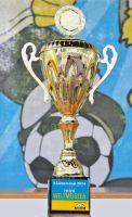 Anerkennung des DFB und Großes Finale der  3-Löwen-Cup mini-WM 2014