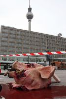 Pressetermin: Berlin-Charlottenburg wird zum Tatort – Tierschützer untersuchen Opfer der Massentierhaltung