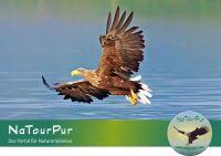 Touren für den Naturschutz bei NaTourPur