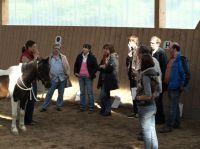 Firmenevents mit der Pferdeakademie