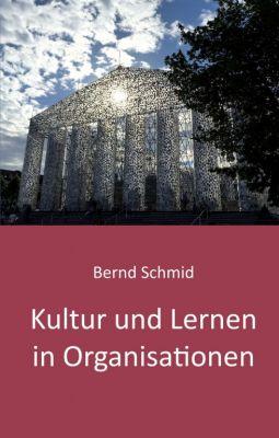"""""""Kultur und Lernen in Organisationen"""" von Bernd Schmid"""