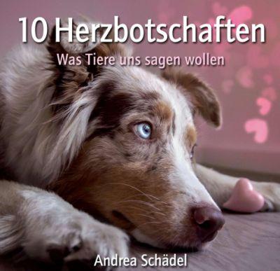 """10 Herzbotschaften"" von Andrea Schädel"