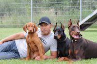 Hundetrainer Markus Satke mit seinen Schülern