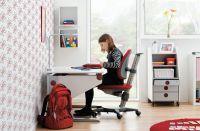 Schreibtisch Winner und Ökotest Sieger Drehstuhl Maximo 15 grau/rot von moll