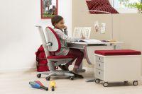 Mitwachsender Schreibtisch Joker von moll