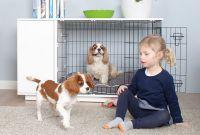 Die erste Hundebox auf die Sie stolz sein können