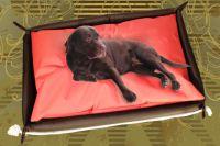 Doggys Flatscreen Premium Hundebett inkl. Hundekissen von Whooop!