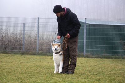 Hundeschule Satke bei München