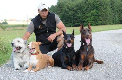 Hundeschule mit Privatcoaching im intensiven Einzelunterricht mit Markus Satke
