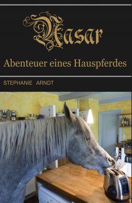 """""""Nasar"""" von Dr. Stephanie Arndt"""