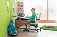 Schreibtisch Winner aus dem Schreibmöbel-Programm new basic von moll