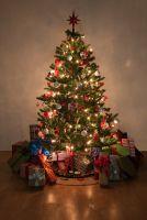 Weihnachtsbaumbeleuchtung mit Lichterketten; Quelle: Lightcycle