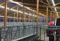 Aufgrund von ammoniakhaltiger Luft sind die Anforderungen an Leuchten in landwirtschaftlichen Betrieben besonders hoch. Foto:Wasco