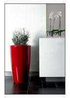 Degardo Pflanzgefäß Rovio - rubinrot für Außen- und Innenaufstellung