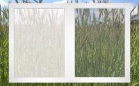 links herkömmliches, rechts neustes Pollenschutz-Gewebe