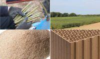 Dank der Anpflanzung einer Kurzumtriebsplantage ist Leipfinger-Bader ab sofort in der Lage eigene Porosierungsstoffe herzustellen.