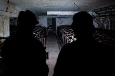 Erfolg: Aktuelle Bildaufnahmen zeigen das leere Schweinehochhaus