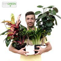 Der Grüne Daumen für alle!