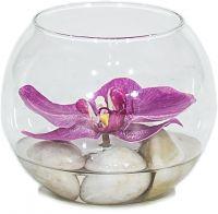 Glasvase mit Orchidee dekoriert