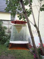 Fliegenfalle mit Lockstoff