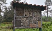 Ein großes Insektenhotel bietet zahlreichen Arten Lebensraum. Kleine Hotels gibt es auch für Haus und Garten.