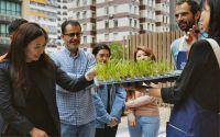 Bei Garage Greens kann man mitten in Hongkong sein Gemüse selbst anbauen. Foto: Garage Society