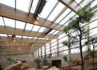 Das neue Vogelhaus verfügt über zwei großflächig verglaste Freiflughallen mit einer Gesamtgrundfläche von 850 Quadratmetern.