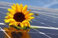 Institut für nachhaltige Stromnutzung (IFNS) empfiehlt Klimatisieren mit Solarstrom