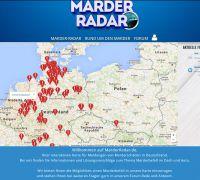 Das Marderradar erstellt eine Übersichtskarte zum Marderbefall in Deutschland