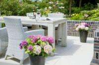 Three Sisters(R) für die Farbbereicherung der Terrasse über den ganzen Sommer