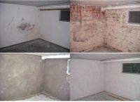 Salzausblühungen und Schimmelbildungen sind typische Folgen von Feuchteschäden im Mauerwerk (o.li.).
