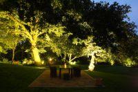 Licht von Klein setzt durch atmosphärische Beleuchtungskonzepte auch Bäume einzigartig in Szene. Bild: Licht von Klein