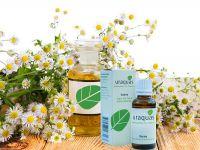 Uraquas - Itzena Compo Blume
