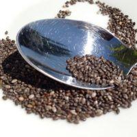 Bio Chiasamen gesunde Nährstoff Kraftwerke
