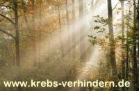 krebs-verhindern.de