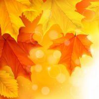 Den Herbst als ideale Zeit für eine Tattooentfernung nutzen / ©freepik.com