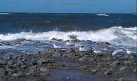 Die Endlichkeit unseres Lebens findet Unendlichkeit in den Meeren dieser Welt.......(Vowi)