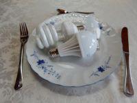 Licht als Nahrung