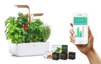 Quinta wird offizieller Distributor von Véritable® Indoor Gärten