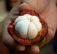 Die Kraft der Mangostan-Frucht