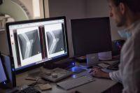 Röntgenbefundung bei den Kleintierspezialisten in Berlin