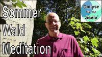 Wald Meditationen für innere Ruhe, Gesundheit und Entspannung